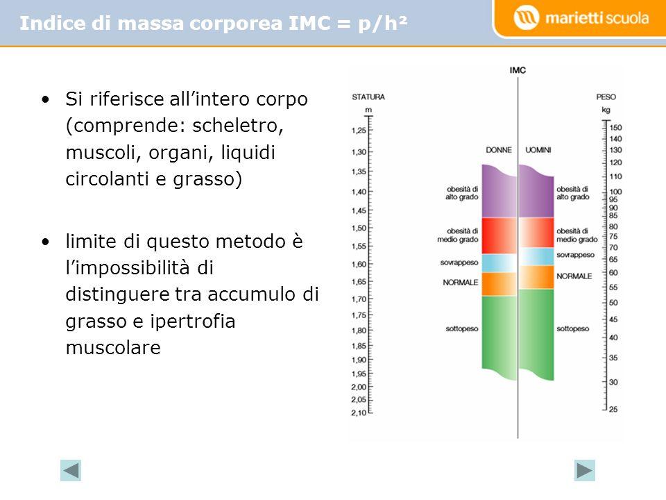 Si riferisce allintero corpo (comprende: scheletro, muscoli, organi, liquidi circolanti e grasso) limite di questo metodo è limpossibilità di distinguere tra accumulo di grasso e ipertrofia muscolare Indice di massa corporea IMC = p/h²