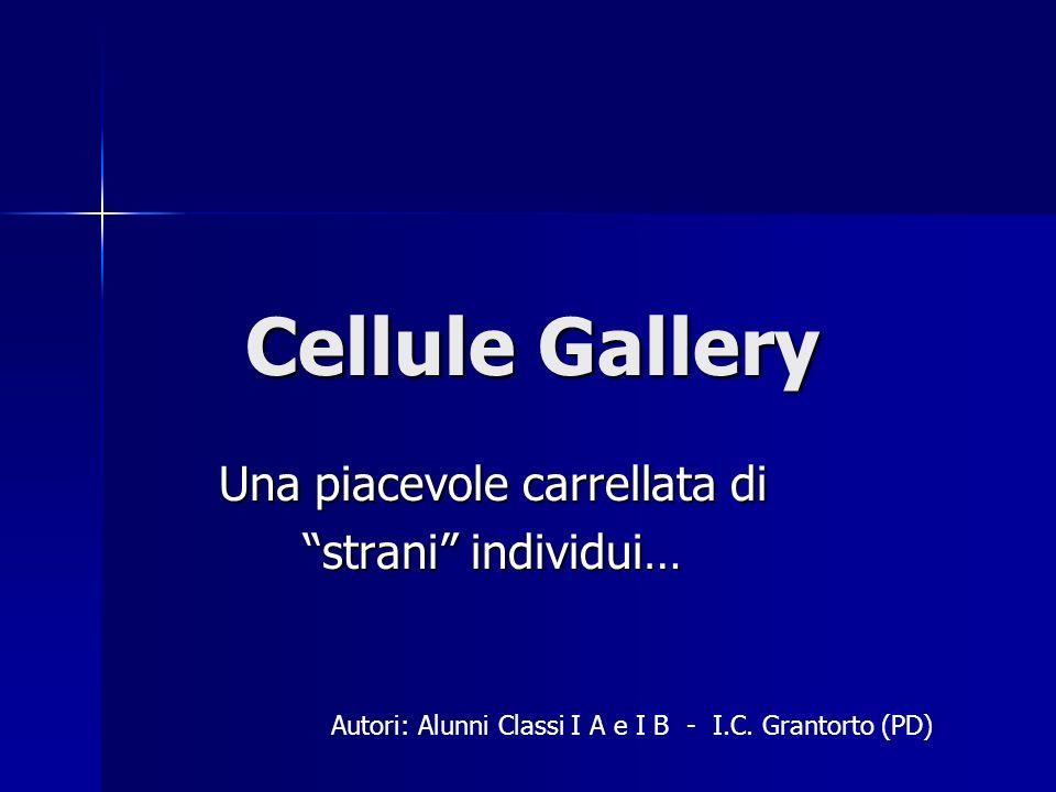 Cellule Gallery Una piacevole carrellata di strani individui… Autori: Alunni Classi I A e I B - I.C. Grantorto (PD)