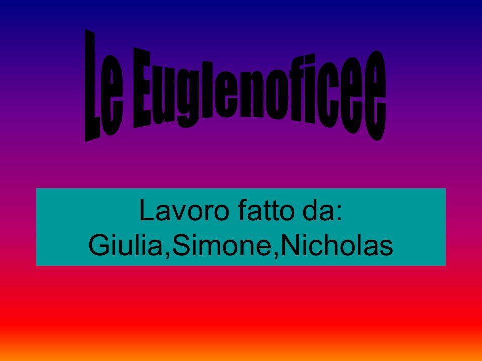 Lavoro fatto da: Giulia,Simone,Nicholas