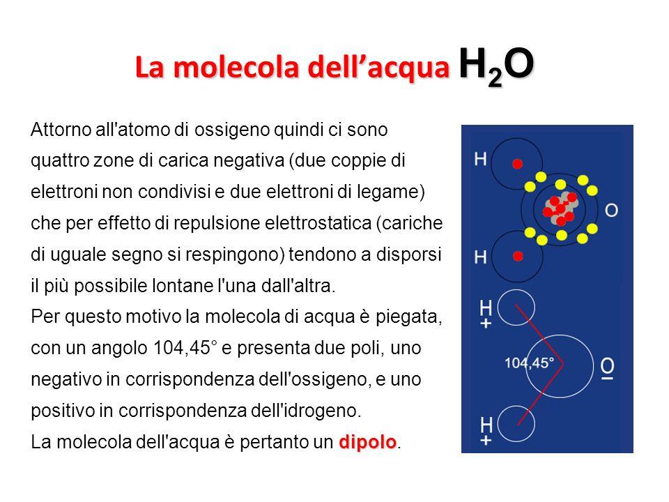 La molecola dellacqua H 2 O Attorno all'atomo di ossigeno quindi ci sono quattro zone di carica negativa (due coppie di elettroni non condivisi e due