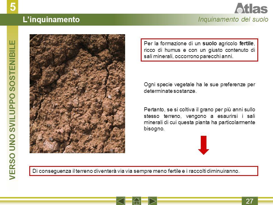5 27 Per la formazione di un suolo agricolo fertile, ricco di humus e con un giusto contenuto di sali minerali, occorrono parecchi anni.