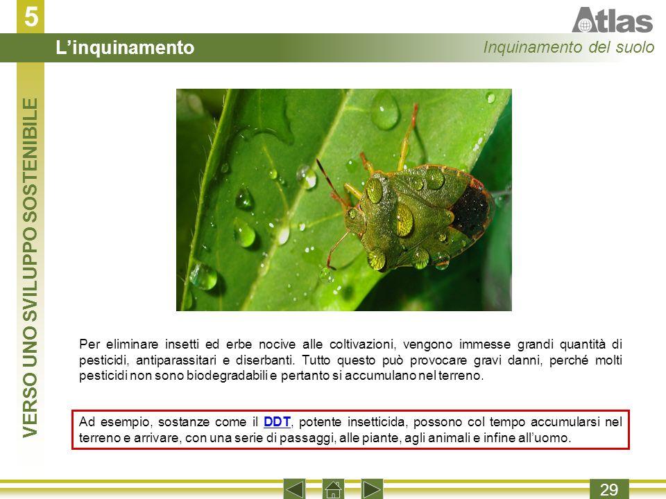 5 29 Per eliminare insetti ed erbe nocive alle coltivazioni, vengono immesse grandi quantità di pesticidi, antiparassitari e diserbanti.