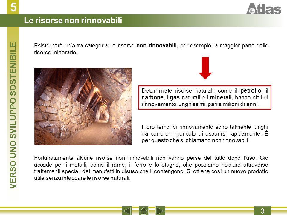 5 3 Esiste però unaltra categoria: le risorse non rinnovabili, per esempio la maggior parte delle risorse minerarie.