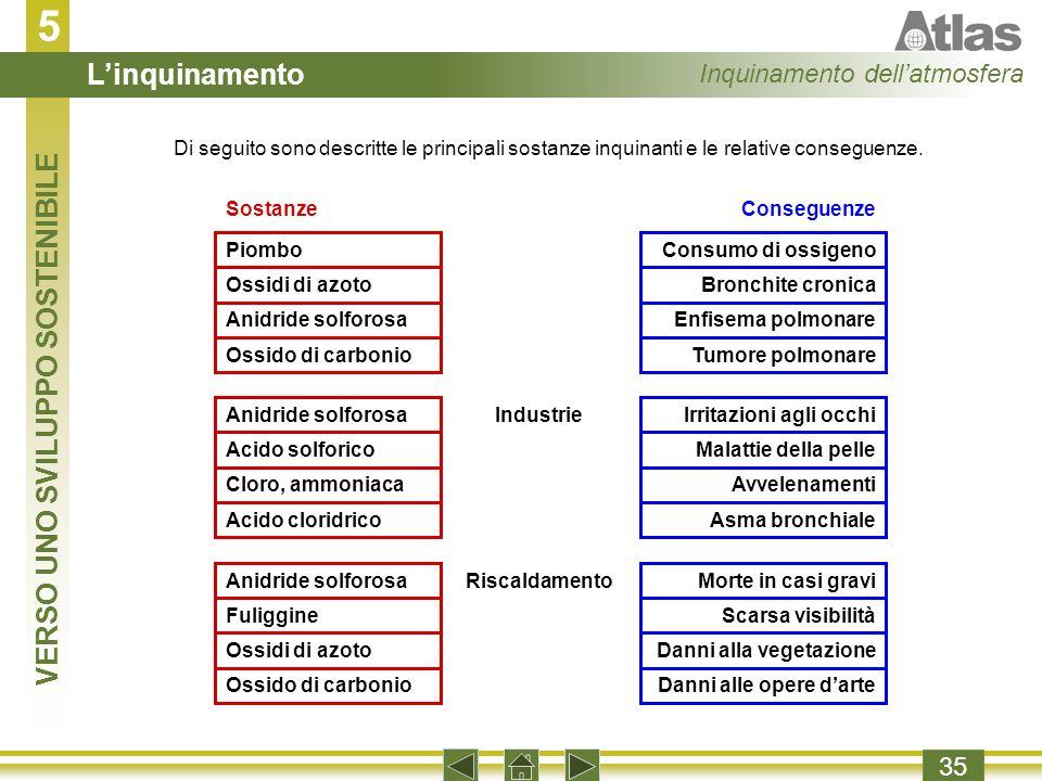 5 35 Di seguito sono descritte le principali sostanze inquinanti e le relative conseguenze.