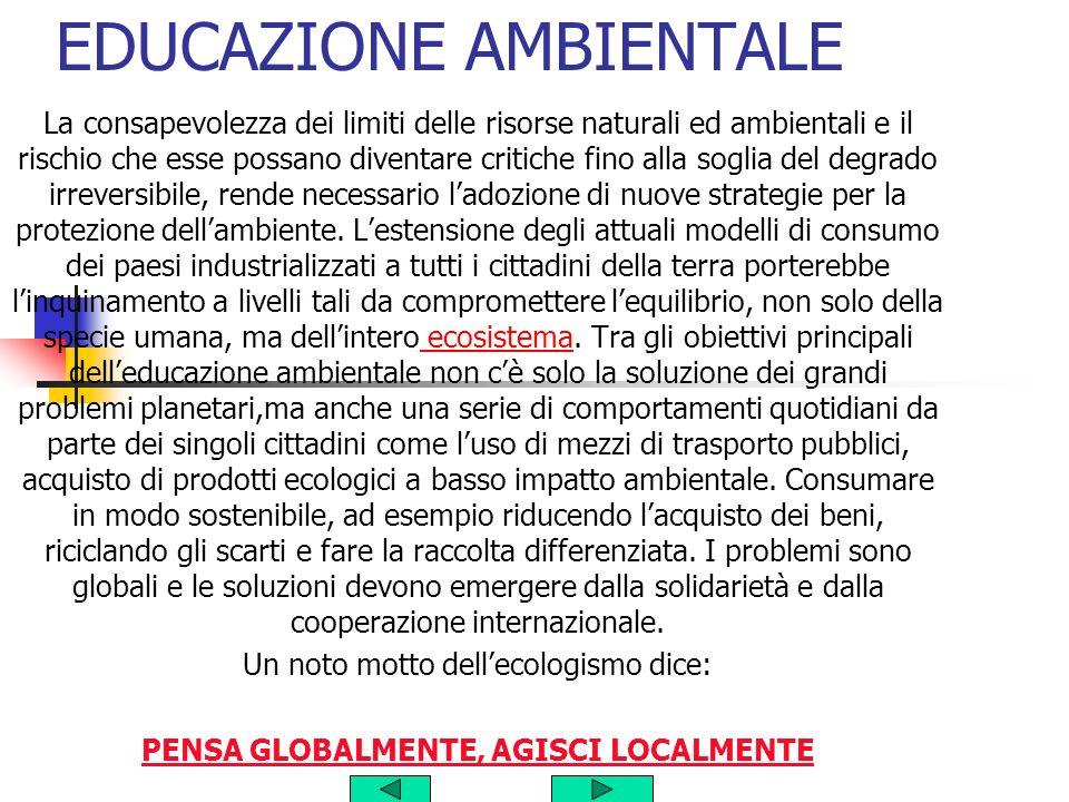 CLASSE V PLESSO DI CAPITIGNANO ANNO 2003/2004 docente Maddalo Giuseppina