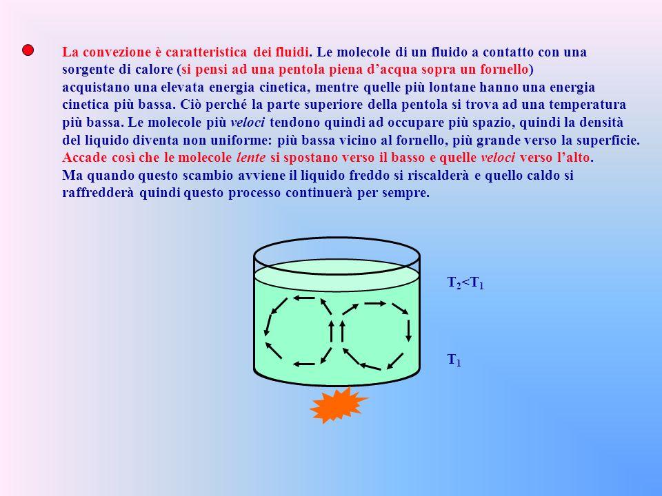 La convezione è caratteristica dei fluidi.