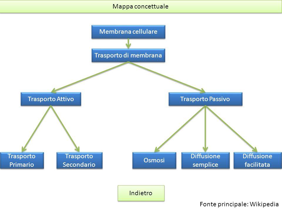 Mappa concettuale Membrana cellulare Trasporto di membrana Trasporto Attivo Trasporto Passivo Trasporto Secondario Trasporto Secondario Trasporto Prim
