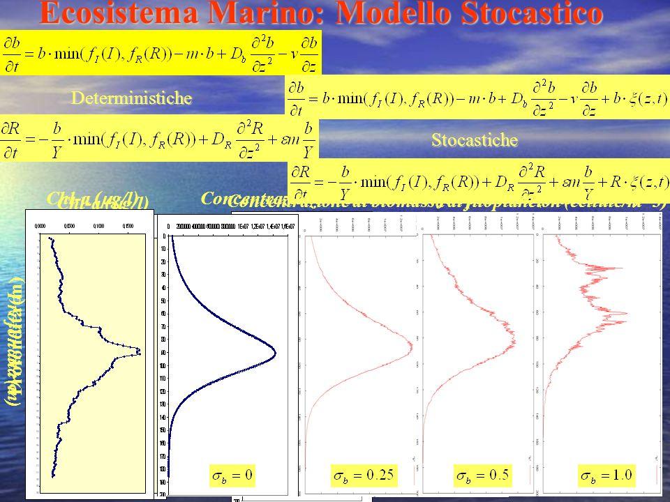 Ecosistema Marino: Modello Stocastico Deterministiche Stocastiche Chl-a ( g/l) Concentrazione di biomassa di fitoplancton (cellule/m^3) Profondità (m)