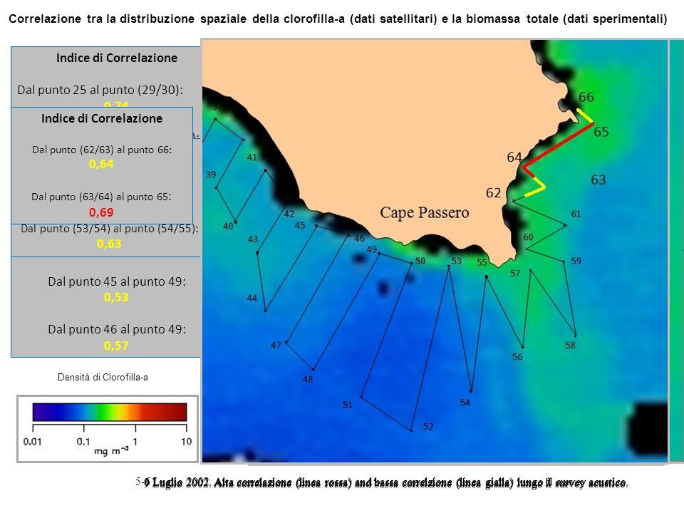 Correlazione tra la distribuzione spaziale della clorofilla-a (dati satellitari) e la biomassa totale (dati sperimentali) 5-6 Luglio 2002. Alta correl