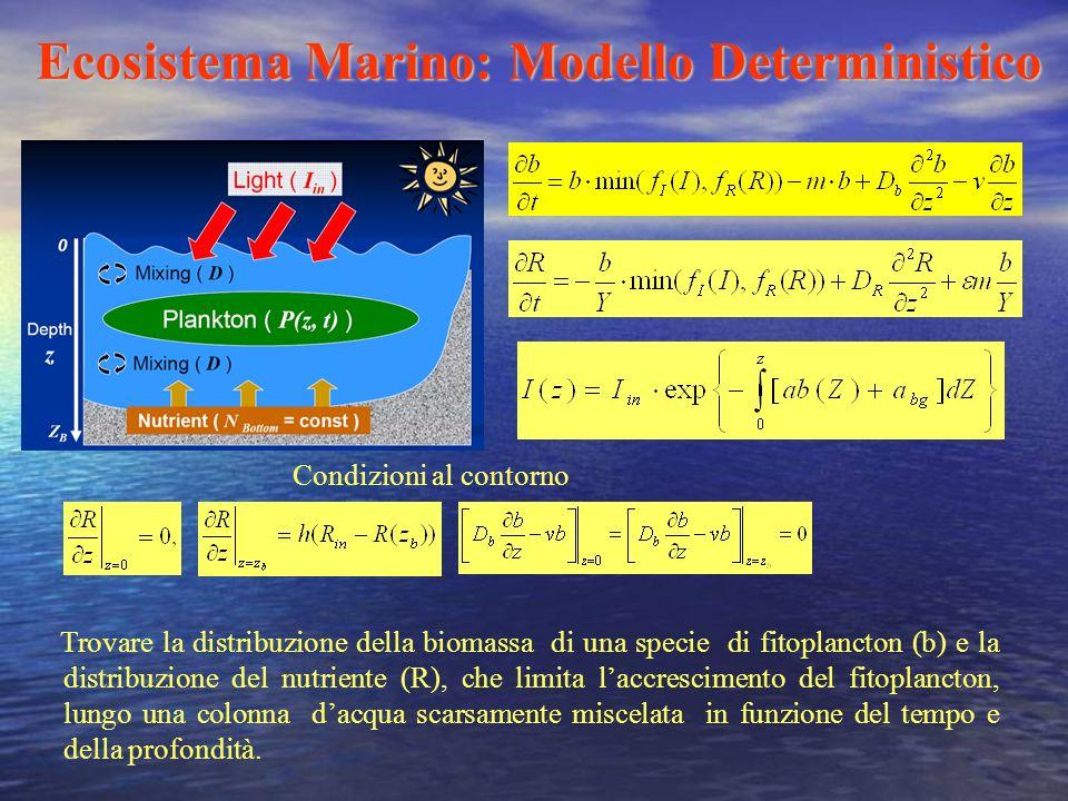 Ecosistema Marino: Modello Deterministico Trovare la distribuzione della biomassa di una specie di fitoplancton (b) e la distribuzione del nutriente (