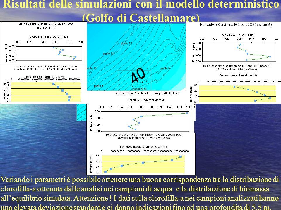 Risultati delle simulazioni con il modello deterministico (Golfo di Castellamare) Variando i parametri è possibile ottenere una buona corrispondenza t