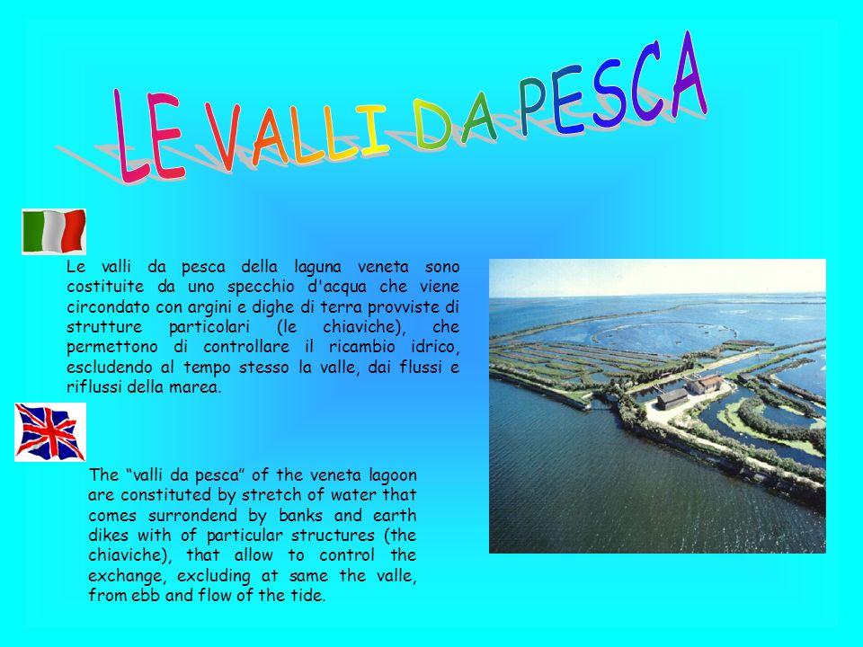 Le valli da pesca della laguna veneta sono costituite da uno specchio d'acqua che viene circondato con argini e dighe di terra provviste di strutture