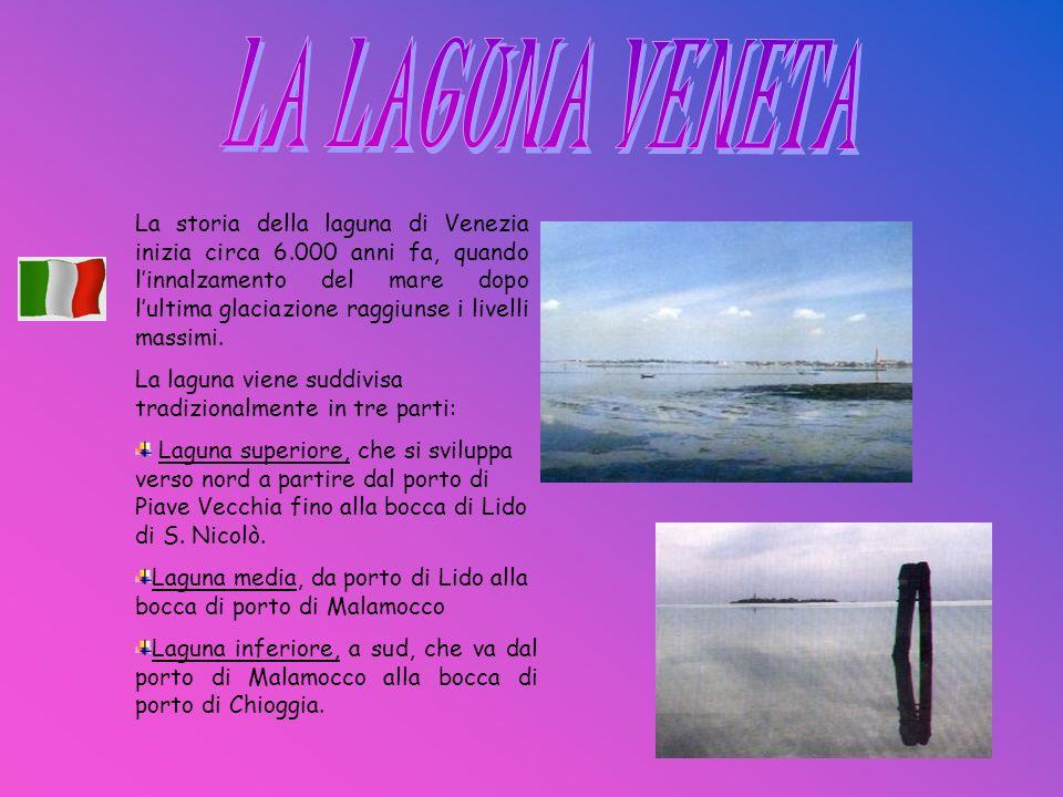 La storia della laguna di Venezia inizia circa 6.000 anni fa, quando linnalzamento del mare dopo lultima glaciazione raggiunse i livelli massimi. La l