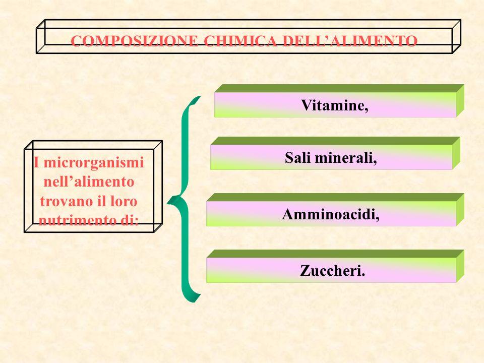 Nellambito dello stesso alimento possono verificarsi diverse tensioni dossigeno, ad esempio in grossi pezzi di carne si può avere un ambiente anaerobi