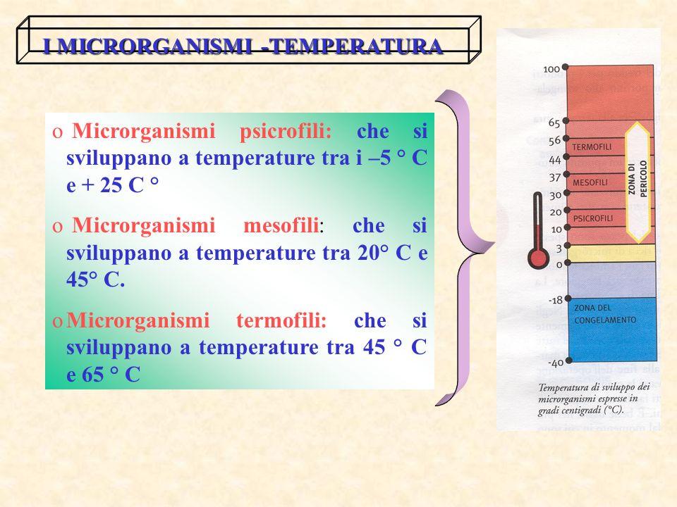 I MICRORGANISMI -TEMPERATURA o Microrganismi psicrofili: che si sviluppano a temperature tra i –5 ° C e + 25 C ° o Microrganismi mesofili: che si sviluppano a temperature tra 20° C e 45° C.