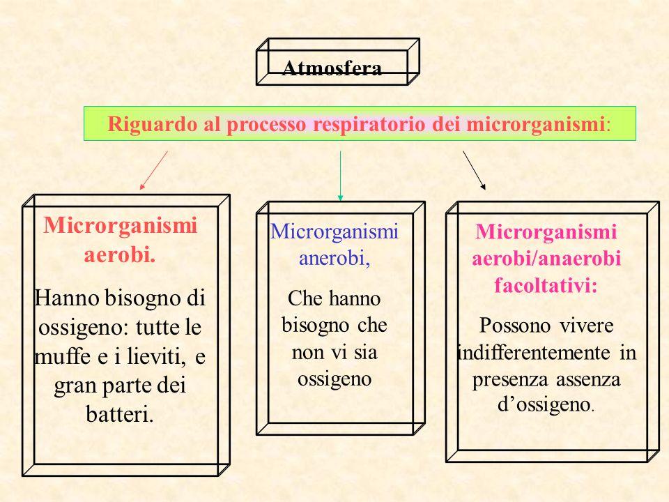 Atmosfera Riguardo al processo respiratorio dei microrganismi: Microrganismi aerobi.