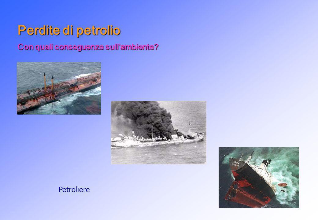 Perdite di petrolio Con quali conseguenze sullambiente? Petroliere