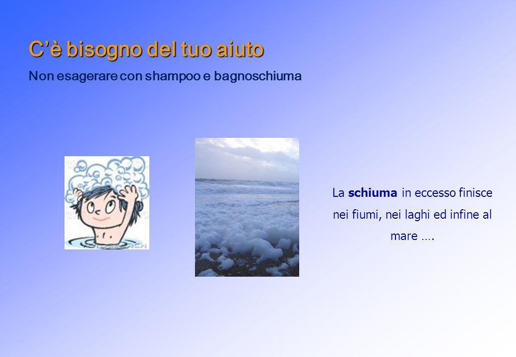 Cè bisogno del tuo aiuto Non esagerare con shampoo e bagnoschiuma La schiuma in eccesso finisce nei fiumi, nei laghi ed infine al mare ….