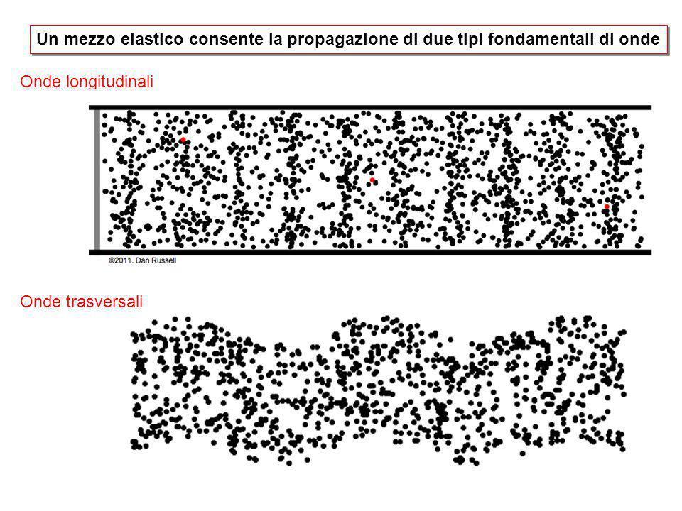 Onde longitudinali Onde trasversali Un mezzo elastico consente la propagazione di due tipi fondamentali di onde