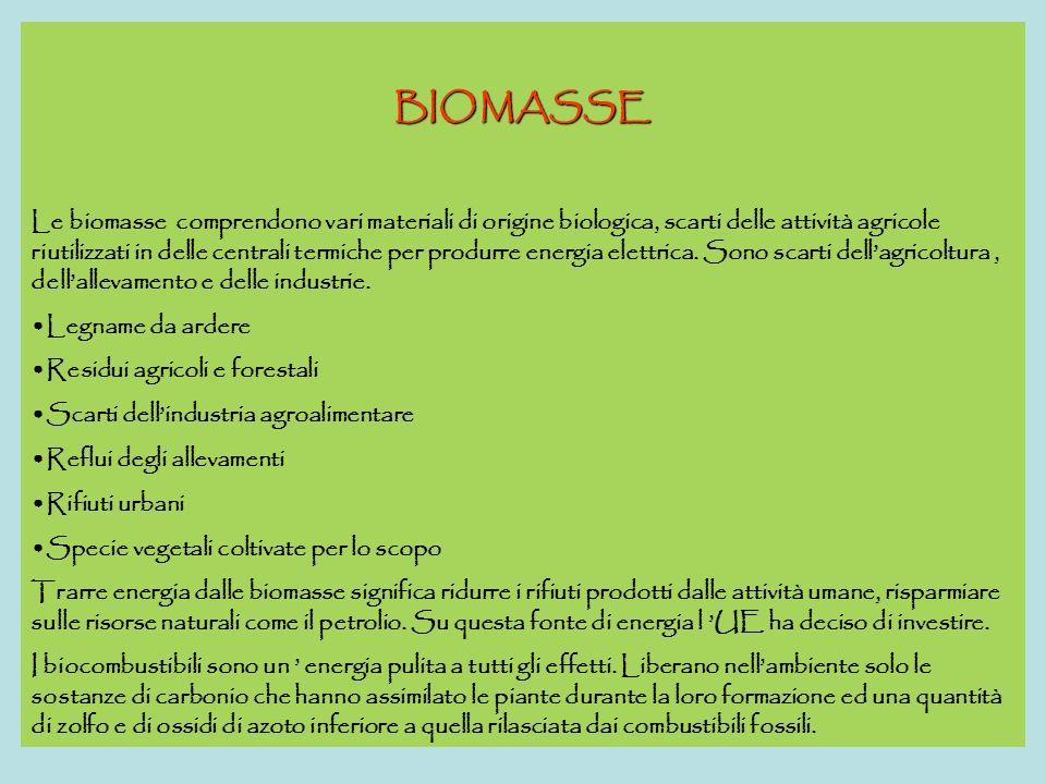 BIOMASSE Le biomasse comprendono vari materiali di origine biologica, scarti delle attività agricole riutilizzati in delle centrali termiche per produrre energia elettrica.