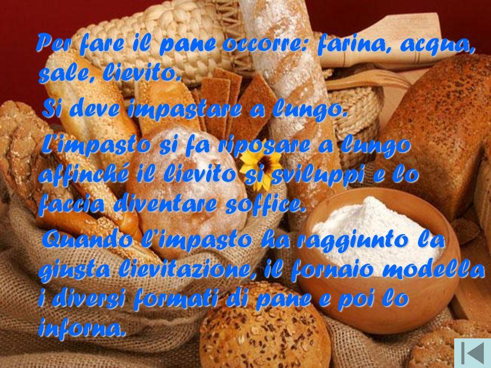 Per fare il pane occorre: farina, acqua, sale, lievito. Si deve impastare a lungo. Si deve impastare a lungo. Limpasto si fa riposare a lungo affinché