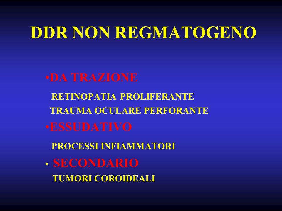 DDR NON REGMATOGENO DA TRAZIONE RETINOPATIA PROLIFERANTE TRAUMA OCULARE PERFORANTE ESSUDATIVO PROCESSI INFIAMMATORI SECONDARIO TUMORI COROIDEALI