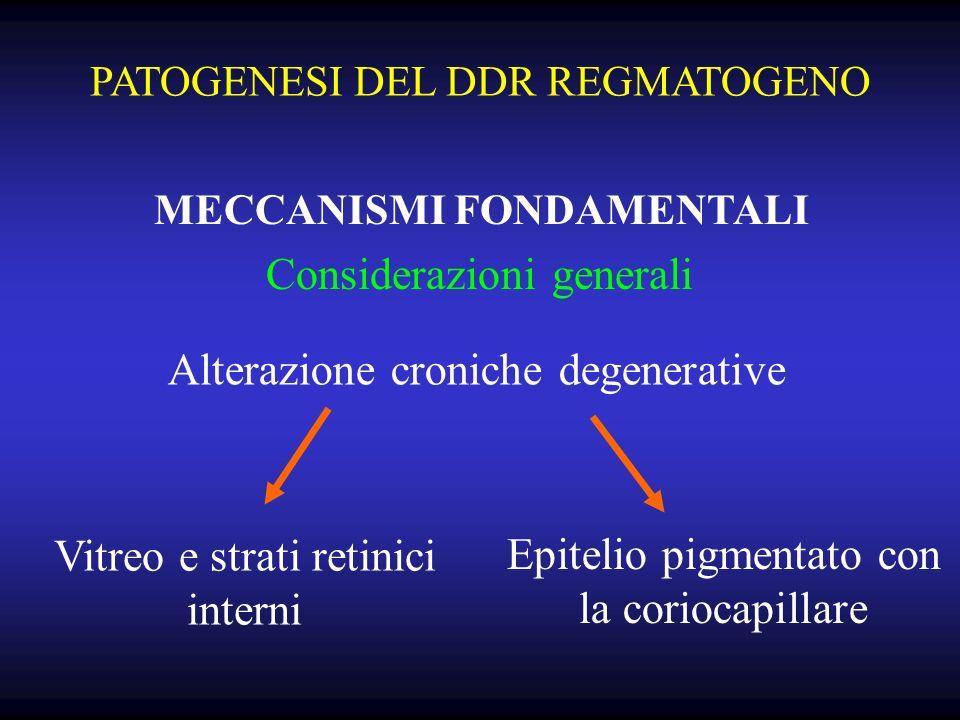 PATOGENESI DEL DDR REGMATOGENO MECCANISMI FONDAMENTALI Considerazioni generali Alterazione croniche degenerative Vitreo e strati retinici interni Epitelio pigmentato con la coriocapillare