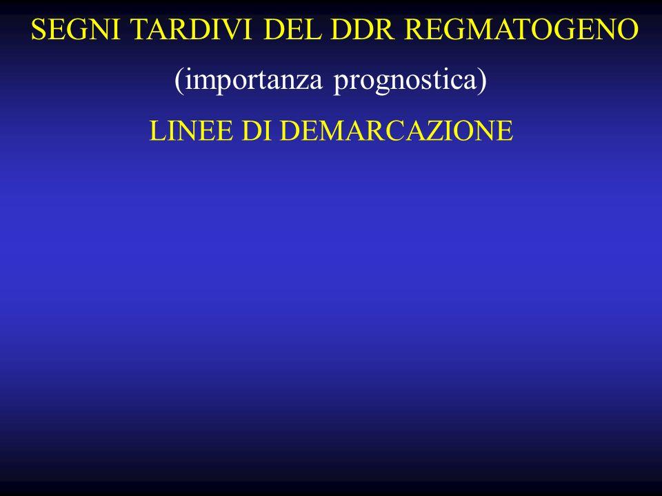 LINEE DI DEMARCAZIONE SEGNI TARDIVI DEL DDR REGMATOGENO (importanza prognostica)