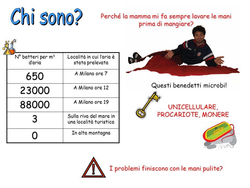 N° batteri per m 3 daria Località in cui laria è stata prelevata 650 A Milano ore 7 23000 A Milano ore 12 88000 A Milano ore 19 3 Sulla riva del mare