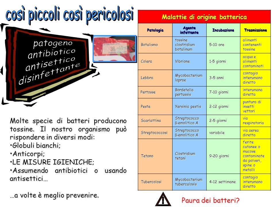 Malattie di origine batterica Patologia Agente infettante IncubazioneTrasmissione Botulismo tossine clostridium botulinum 5-10 ore alimenti contenenti