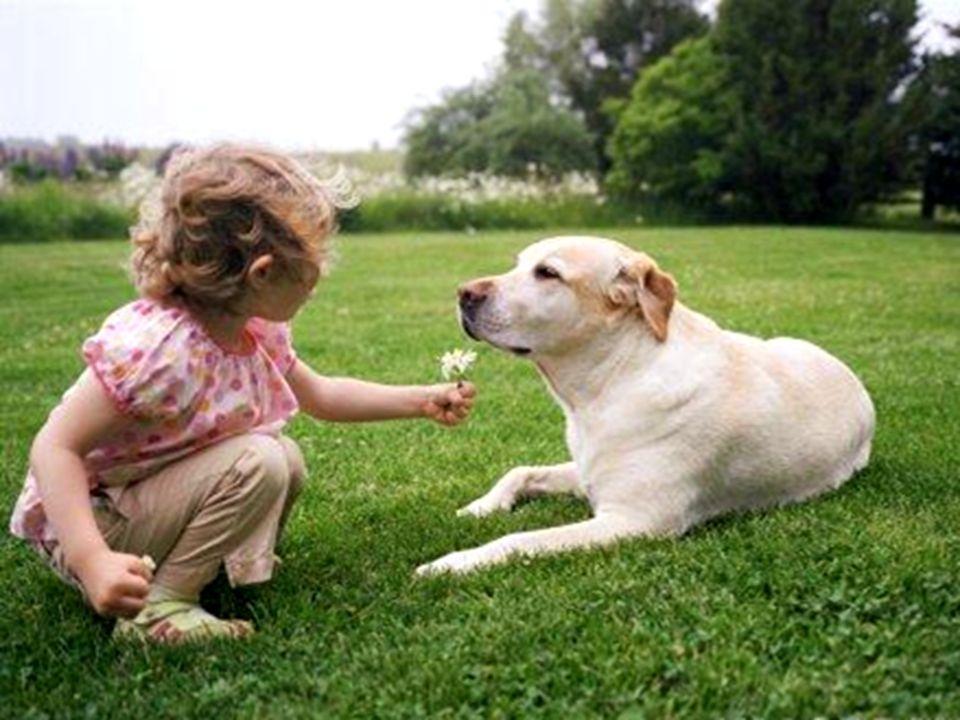 Ricorda, quanto meno una persona sembra meritare il tuo Amore, forse lo necessita maggiormente.
