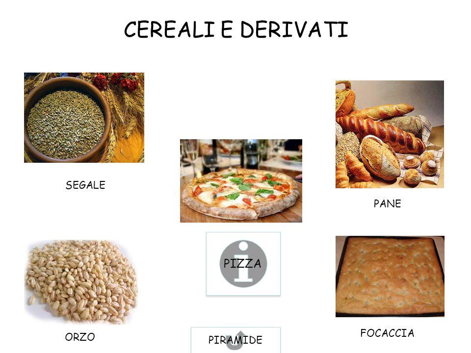 CEREALI E DERIVATI SEGALE ORZO PANE FOCACCIA PIZZA PIRAMIDE