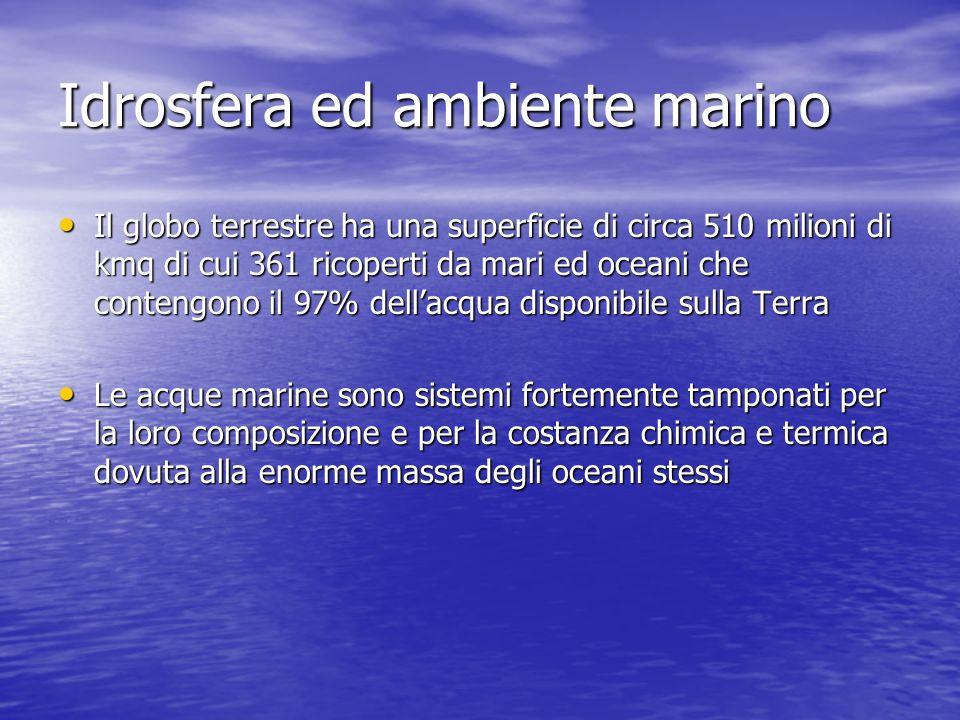 Idrosfera ed ambiente marino Il globo terrestre ha una superficie di circa 510 milioni di kmq di cui 361 ricoperti da mari ed oceani che contengono il