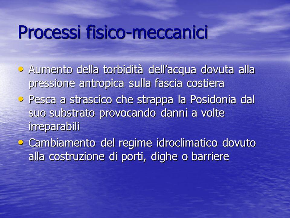 Processi fisico-meccanici Aumento della torbidità dellacqua dovuta alla pressione antropica sulla fascia costiera Aumento della torbidità dellacqua do