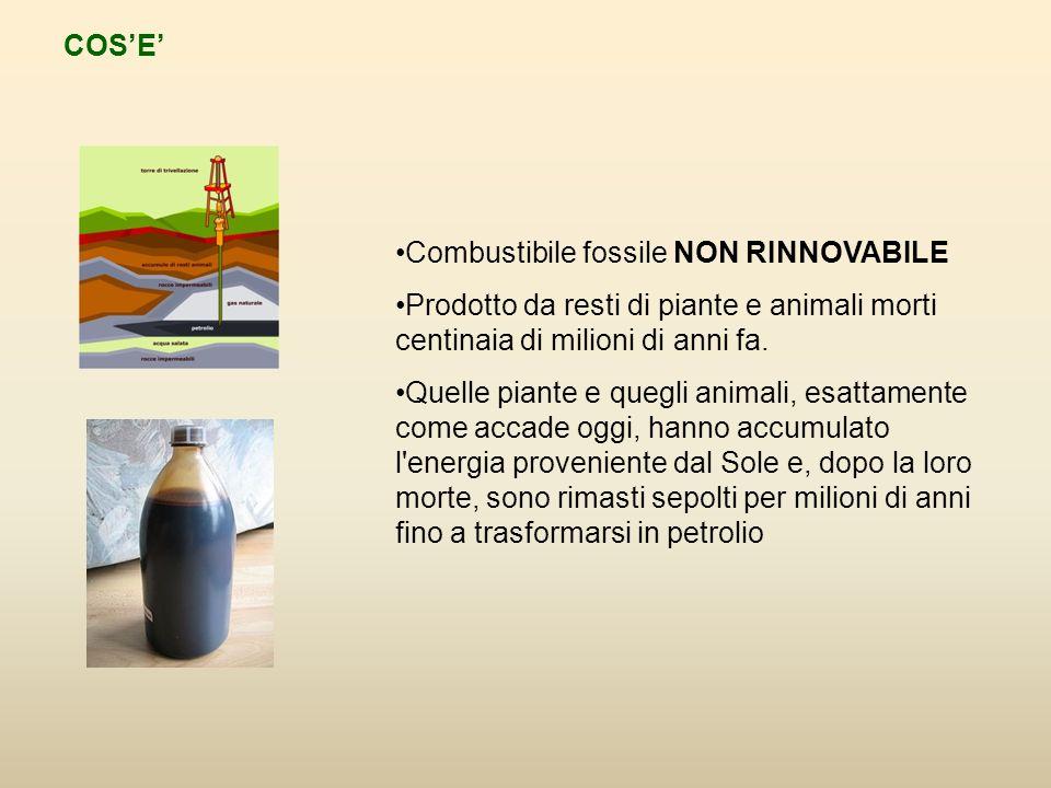 COSE Combustibile fossile NON RINNOVABILE Prodotto da resti di piante e animali morti centinaia di milioni di anni fa.