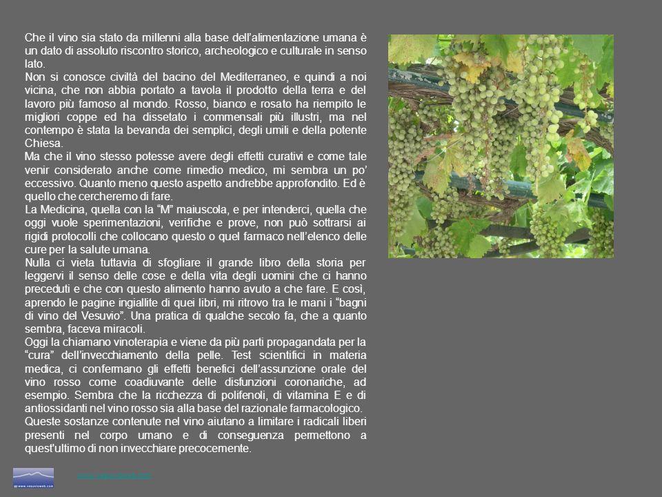 www.vesuvioweb.com La storia dei bagni di vino nella terra del Vesuvio, è legata a due figure interessanti e quanto mai diverse: San Filippo Neri (1515 - 1595) e un tal Ettore Pignatelli (1517 - 1586).