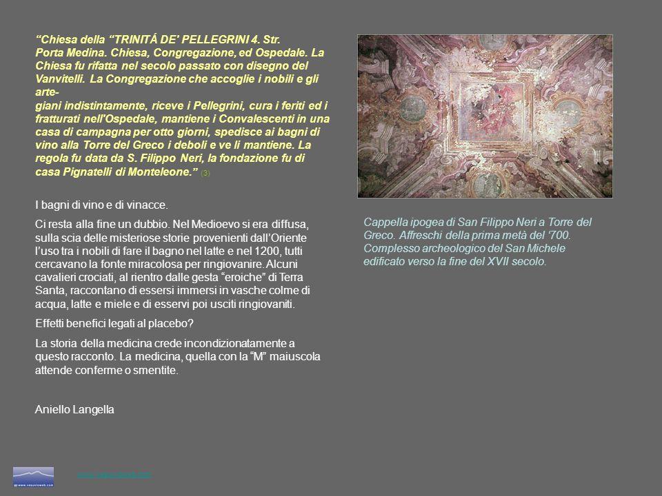 www.vesuvioweb.com 1- Memorie istoriche di quanto e accaduto in Sicilia - Battista Caruso – 1744 2 - Topografia vniversale della citta di Napoli - Niccolò Carletti – 1776 3 - Manuale del forestiero in Napoli - Napoli 1845.