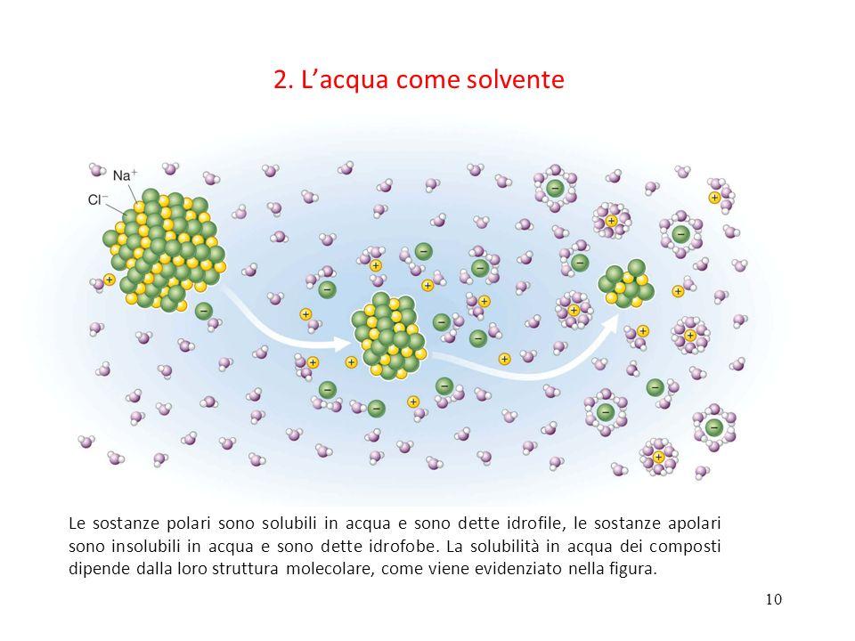 10 2. Lacqua come solvente Le sostanze polari sono solubili in acqua e sono dette idrofile, le sostanze apolari sono insolubili in acqua e sono dette