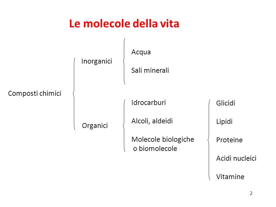 2 Composti chimici Inorganici Acqua Sali minerali Organici Idrocarburi Alcoli, aldeidi Molecole biologiche o biomolecole Glicidi Lipidi Proteine Acidi