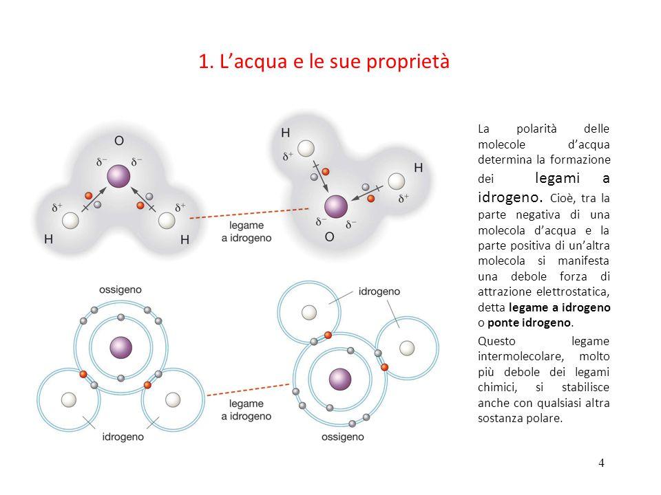 4 1. Lacqua e le sue proprietà La polarità delle molecole dacqua determina la formazione dei legami a idrogeno. Cioè, tra la parte negativa di una mol
