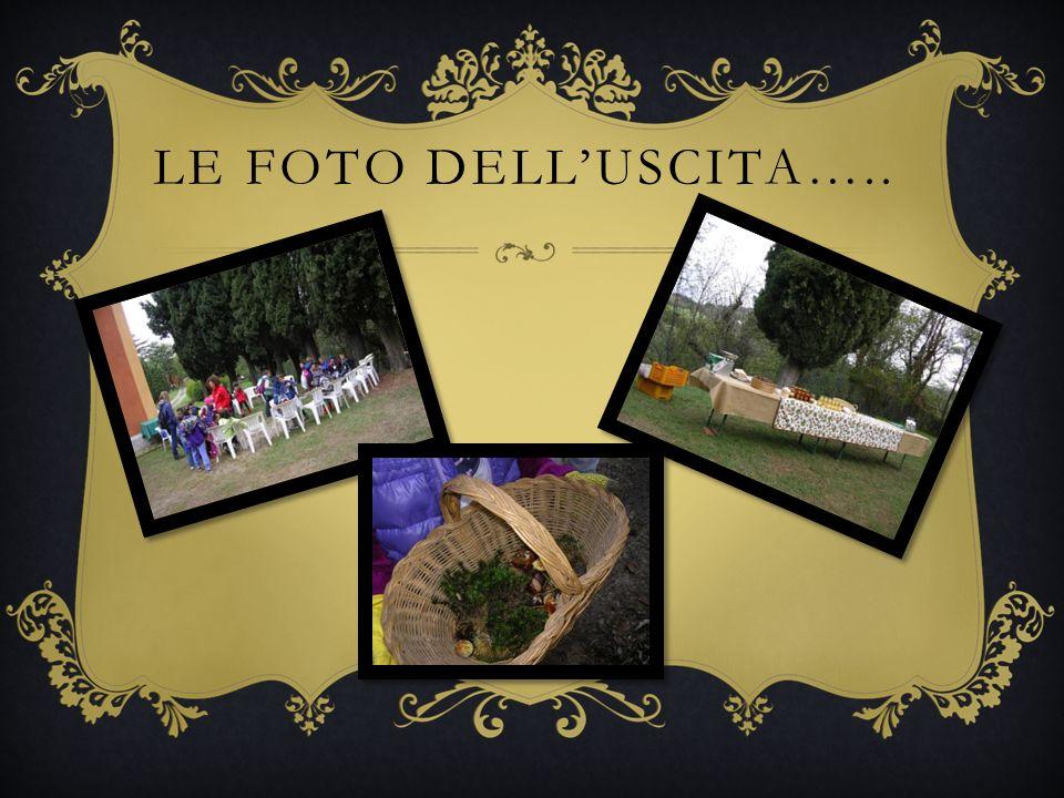 LE FOTO DELLUSCITA…..