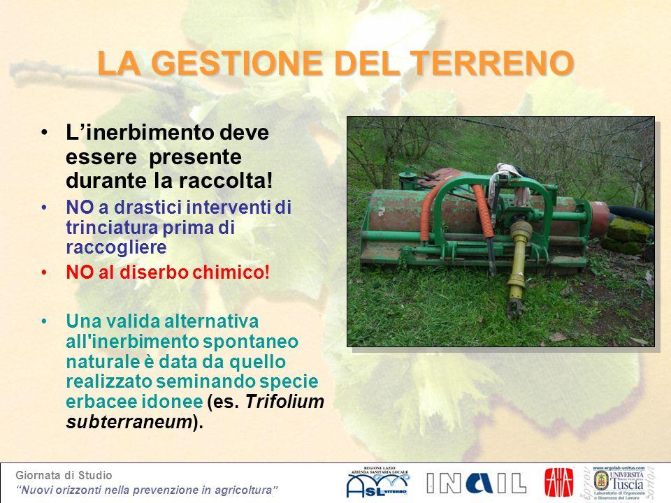 Giornata di Studio Nuovi orizzonti nella prevenzione in agricoltura LA GESTIONE DEL TERRENO Linerbimento deve essere presente durante la raccolta! NO