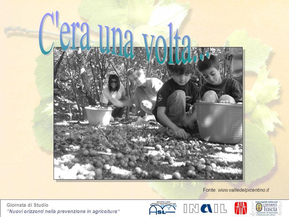 Giornata di Studio Nuovi orizzonti nella prevenzione in agricoltura Fonte: www.valledelpicentino.it