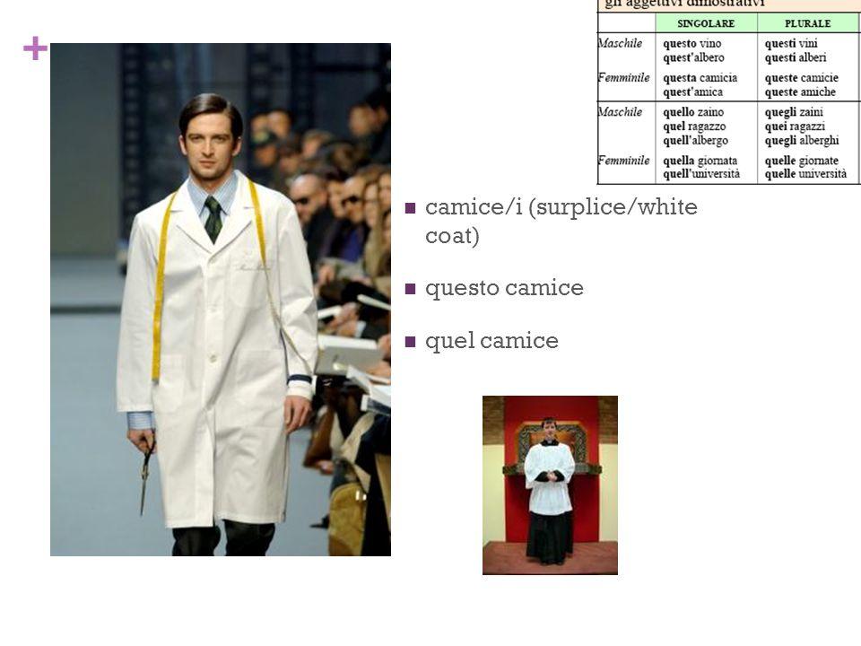 + camice/i (surplice/white coat) questo camice quel camice