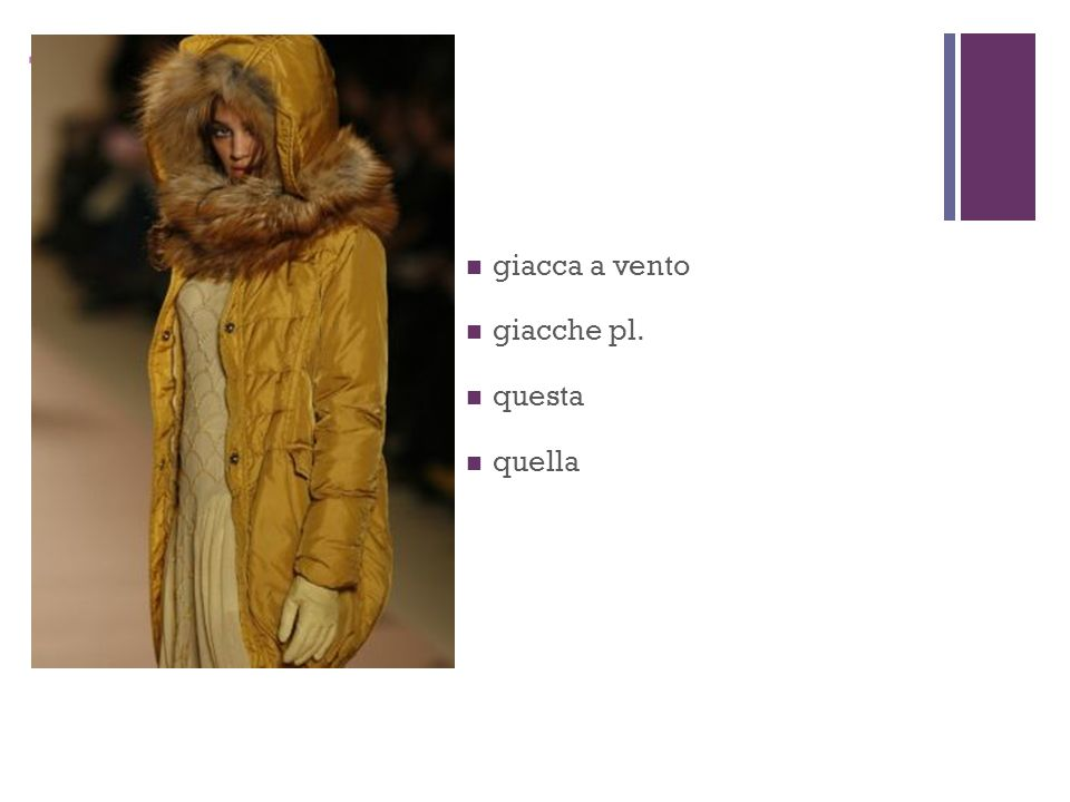 + giacca a vento giacche pl. questa quella