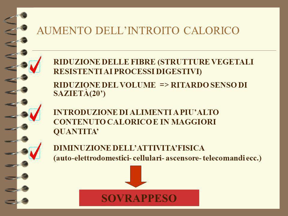 AUMENTO DELLINTROITO CALORICO RIDUZIONE DELLE FIBRE (STRUTTURE VEGETALI RESISTENTI AI PROCESSI DIGESTIVI) RIDUZIONE DEL VOLUME => RITARDO SENSO DI SAZIETÀ(20) INTRODUZIONE DI ALIMENTI A PIUALTO CONTENUTO CALORICO E IN MAGGIORI QUANTITA DIMINUZIONE DELLATTIVITAFISICA (auto-elettrodomestici- cellulari- ascensore- telecomandi ecc.) SOVRAPPESO