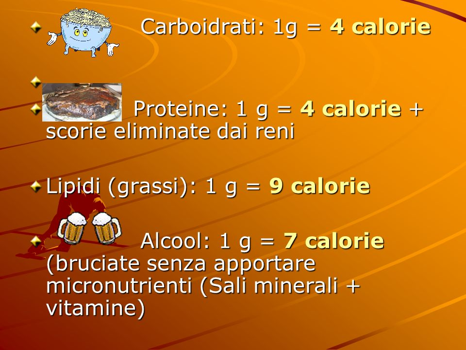 I grassi servono: 1) formano lembrione delle cellule 2) trasportano vitamine A, D, E, K 3) proteggono gli organi interni da traumi (fungono da air-bag