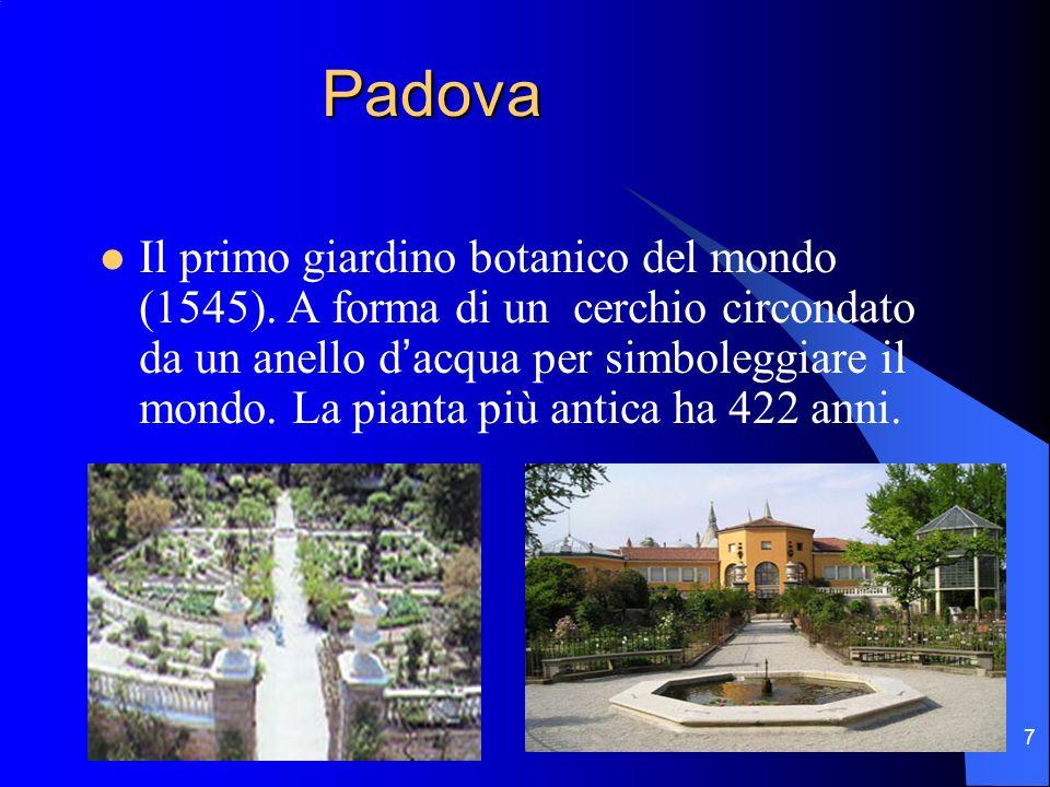 7 Padova Padova Il primo giardino botanico del mondo (1545). A forma di un cerchio circondato da un anello dacqua per simboleggiare il mondo. La piant
