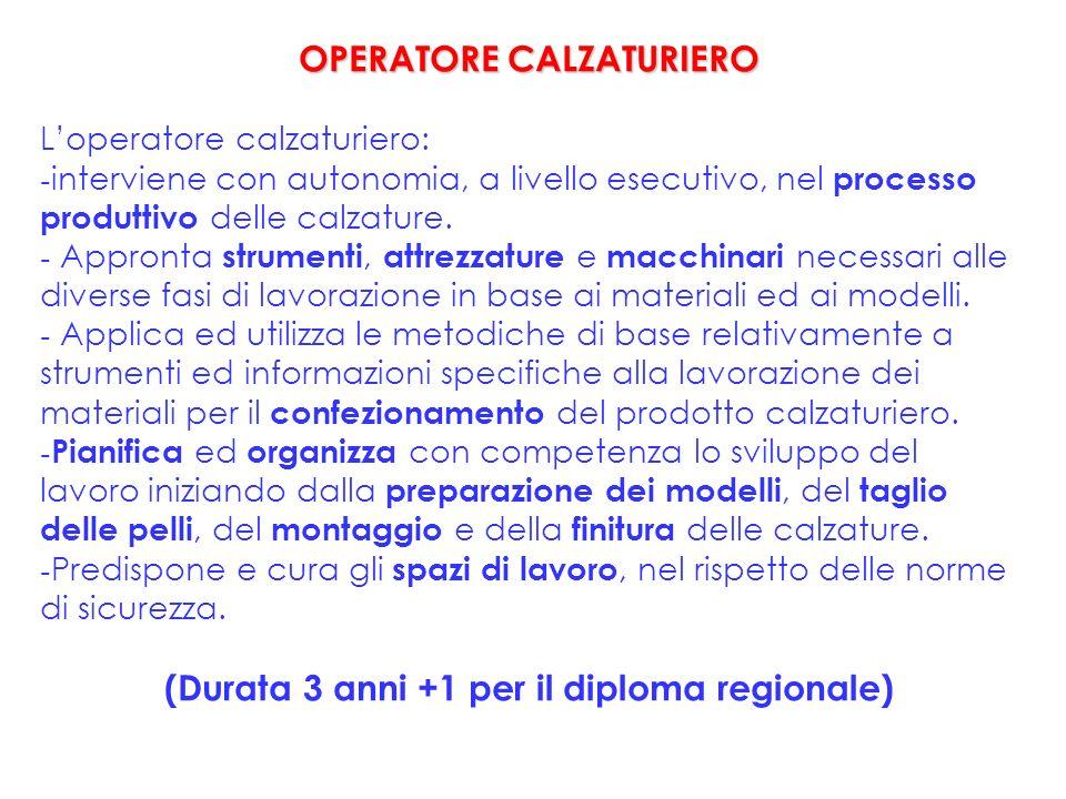 OPERATORE CALZATURIERO Loperatore calzaturiero: - interviene con autonomia, a livello esecutivo, nel processo produttivo delle calzature.