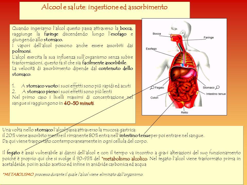 Alcool e salute: ingestione ed assorbimento Quando ingeriamo lalcol questo passa attraverso la bocca, raggiunge la faringe discendendo lungo lesofago